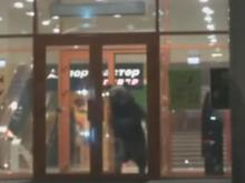 Bear killed after escape from Russia shopping mall