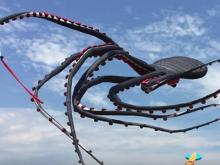 Giant octopus kite flying
